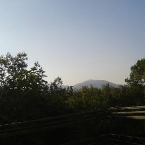 El Montseny en agosto
